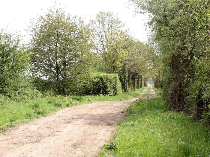 Le circuit de Saint-André 20060504_063