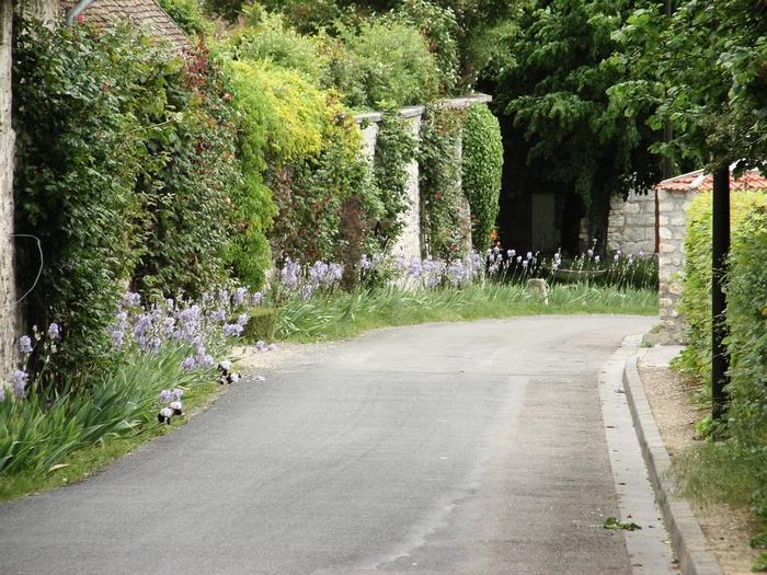 Les coteaux de Giverny 20060519_004