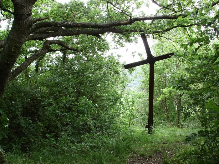 Les coteaux de Giverny 20060519_076
