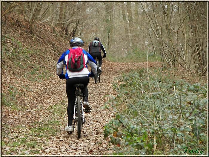 En forêt de Bord/Louviers 20070128_027