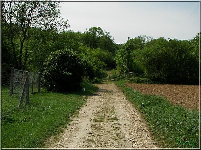Normanville et Hondouville 20070501_035