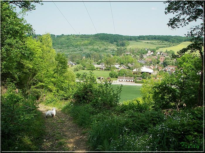 Normanville et Hondouville 20070501_125