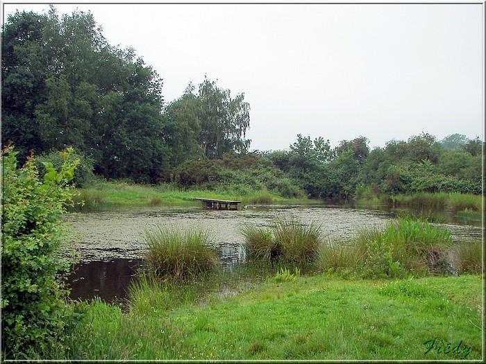 La Mare Saint Lubin 20070526_003