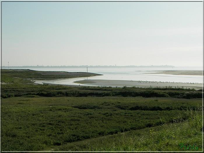 Baie de Somme, premier jour 20070908_009