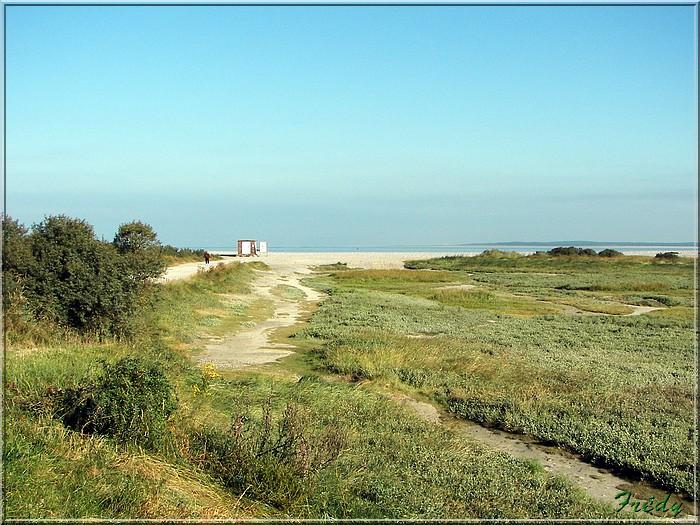 Baie de Somme, premier jour 20070908_012