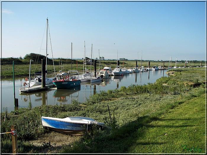 Baie de Somme, premier jour 20070908_017