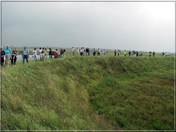 Baie de Somme, premier jour 20070908_093