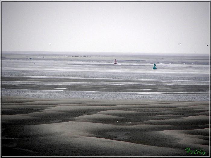 Baie de Somme, premier jour 20070908_106
