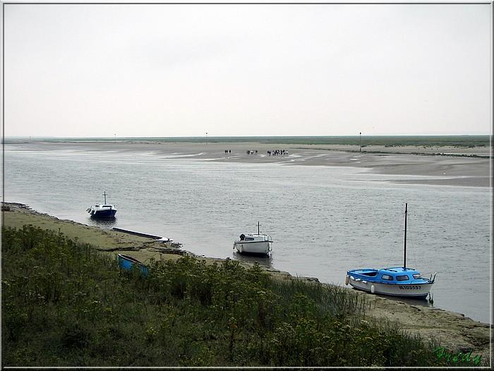 Baie de Somme, premier jour 20070908_114