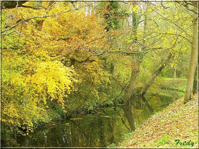 L'automne à l'étang de Croth 20071108_020