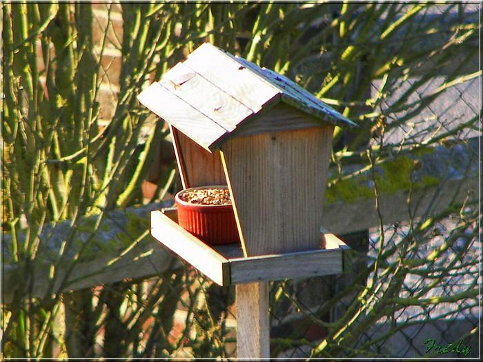 La mangeoire aux oiseaux 20071215_004