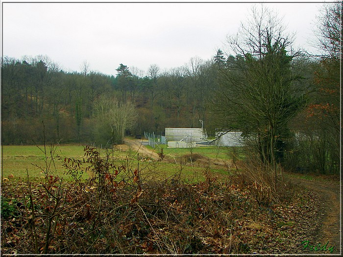 Le sentier de Pierre Ronde (Beaumesnil) 20080221_016