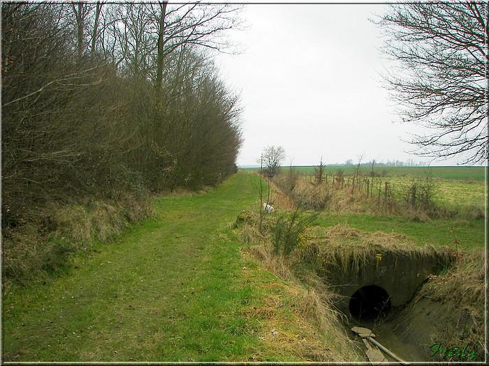 Le sentier de Pierre Ronde (Beaumesnil) 20080221_043
