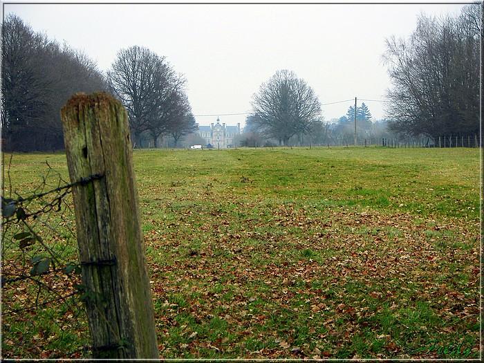 Le sentier de Pierre Ronde (Beaumesnil) 20080221_053