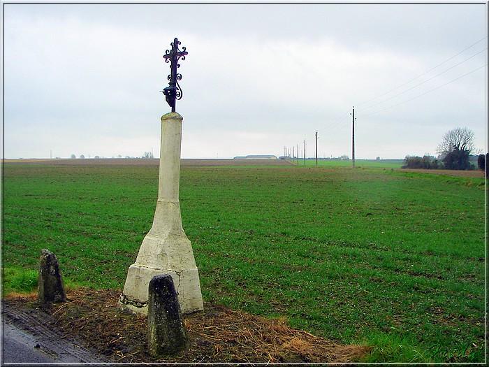 Acquigny, le Bois Ricard 20080228_035
