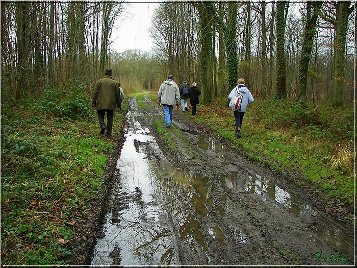 Acquigny, le Bois Ricard 20080228_040