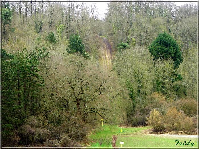 Acquigny, le Bois Ricard 20080228_048