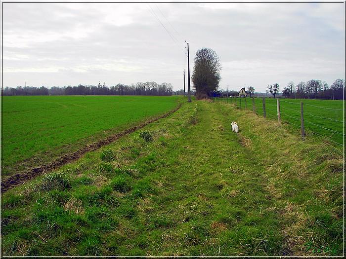 Broglie, le Prieuré 20080301_043