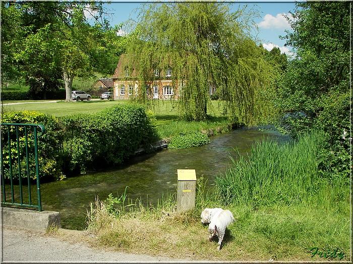 Lyons la Forêt : La Fontaineresse 20080512_052