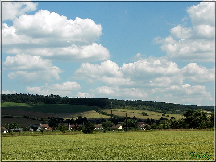 Cailly sur Eure 20080617_009