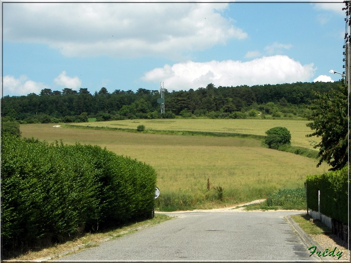 Cailly sur Eure 20080617_019