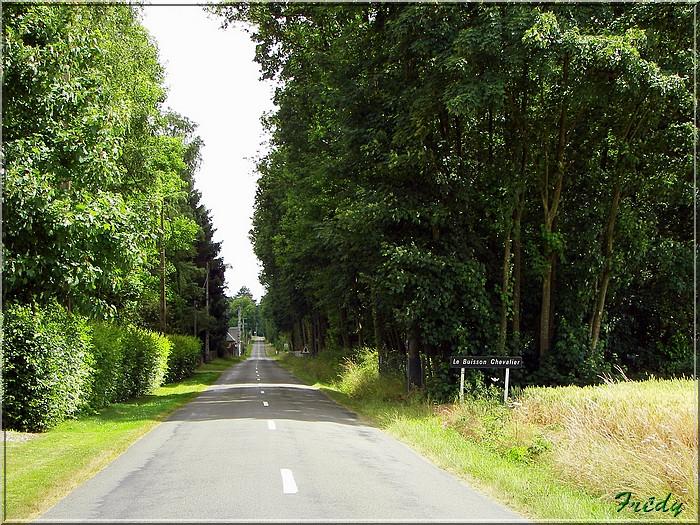 Le Sacq, circuit des Moulins 20080628_060