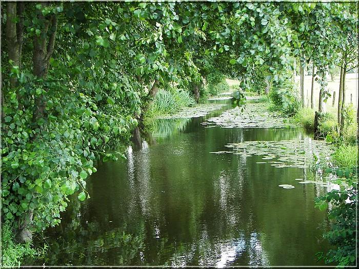 Le Sacq, circuit des Moulins 20080628_069