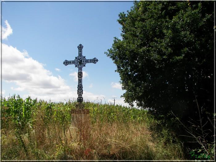 Notre Dame du Hamel, circuit du Bois-Hibou 20080721_013