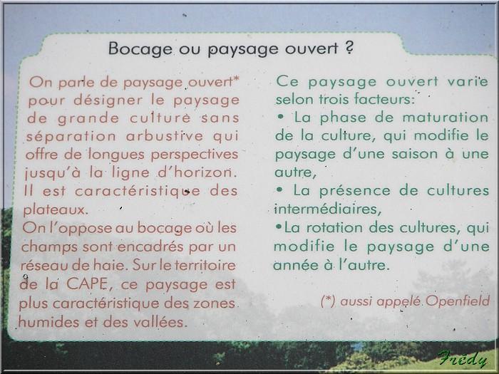 La Vallée Bance, nouvelle méthode 20080829_011