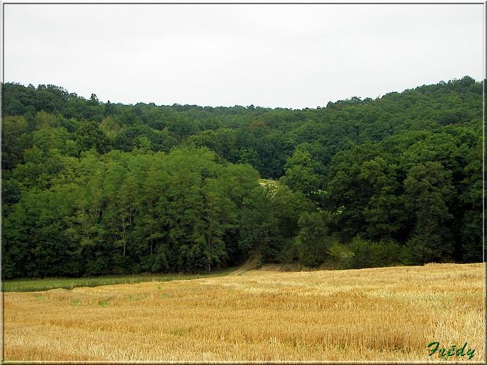 La Vallée Bance, nouvelle méthode 20080829_042