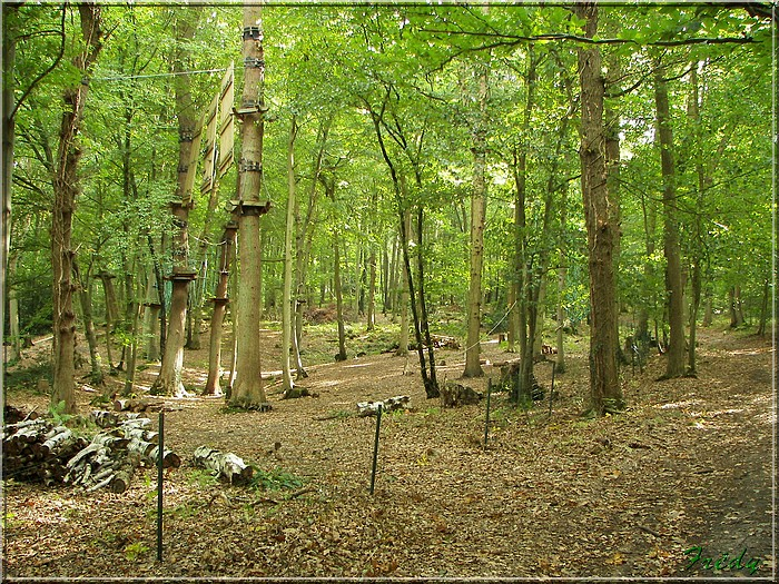 Aizier, le chemin des Sources Bleues 20080925_049