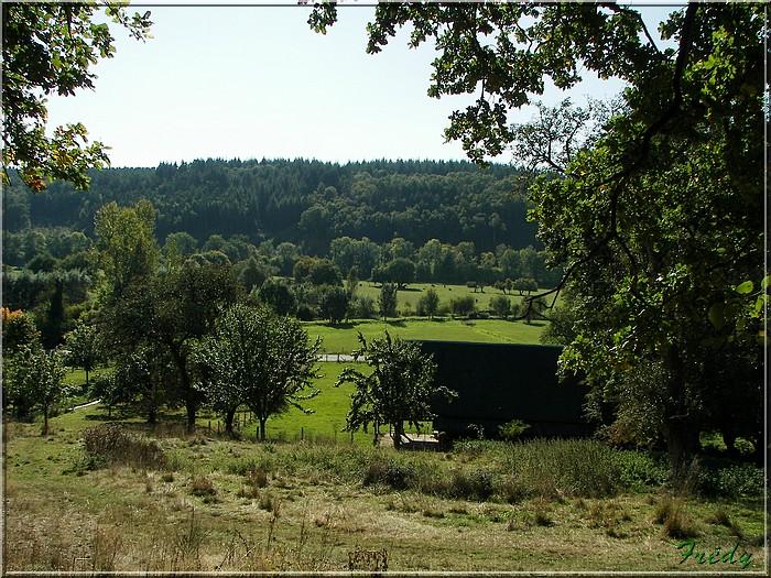Bec-Hellouin, circuit des Bénédictins 20080927_036
