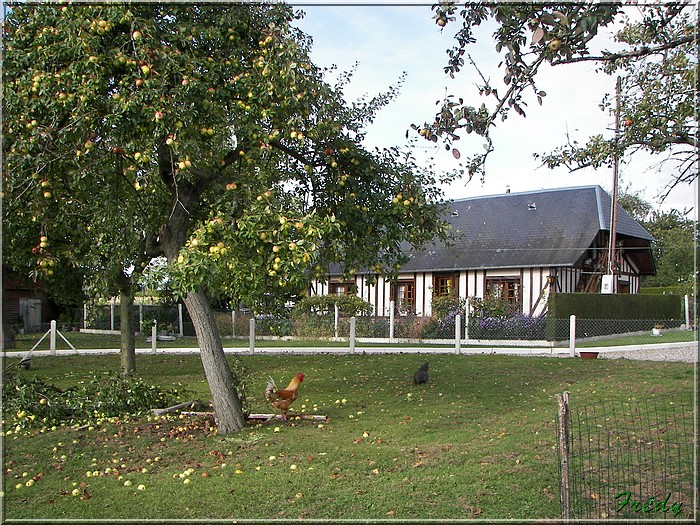 Corneville sur Risle, un goupe de LE 20081004_047
