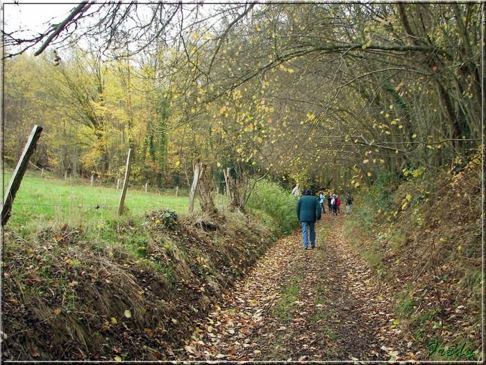 Hondouville, circuit autour du village 20081112_006