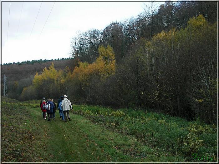 Hondouville, circuit autour du village 20081112_021