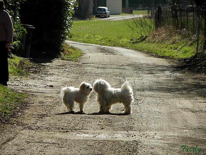 La Vallée de la Taupe, avec Annie et Danver 20090306_036
