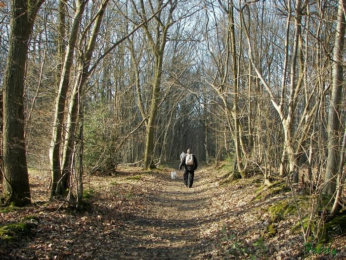La Vallée de la Taupe, avec Annie et Danver 20090306_072