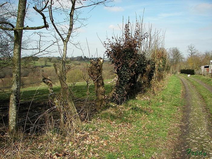 La Vallée du Gueil 20090315_009