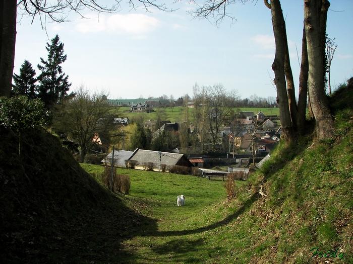 La Vallée du Gueil 20090315_032