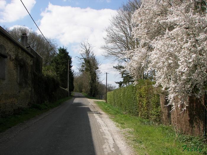 De Dampierre à Acon, Entre Avre et Meuvette 20090406_023