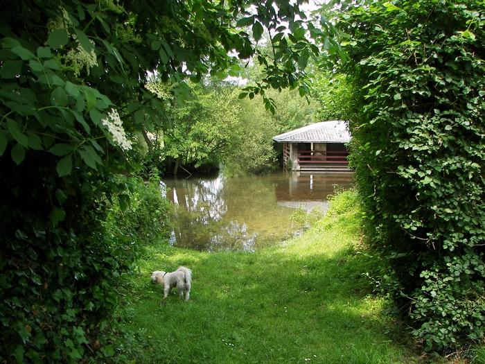 D'Acon à Breux, seul avec Ulysse 20090605_006