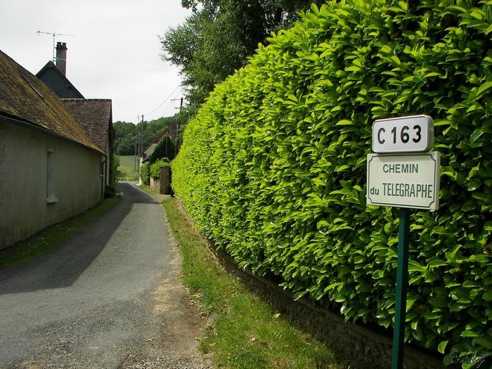D'Acon à Breux, seul avec Ulysse 20090605_039