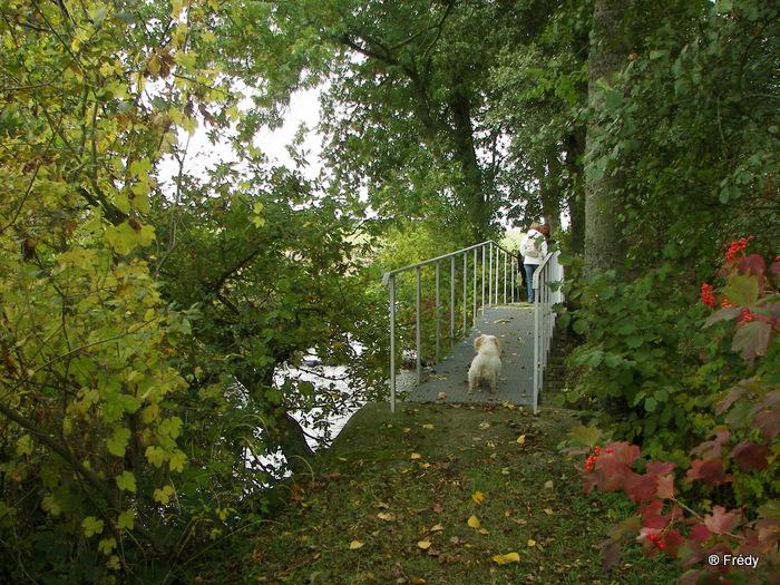 Cintray, le Chemin des Isles 20091023_015