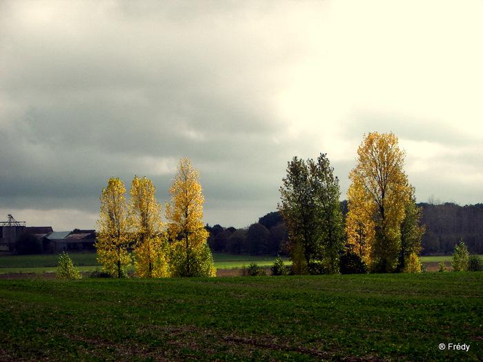 Cintray, le Chemin des Isles 20091023_017