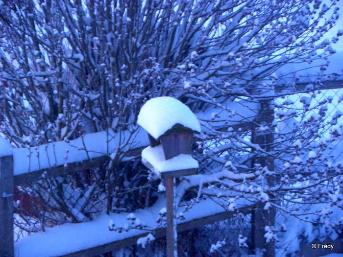 En Normandie aussi, la neige 20100107_001
