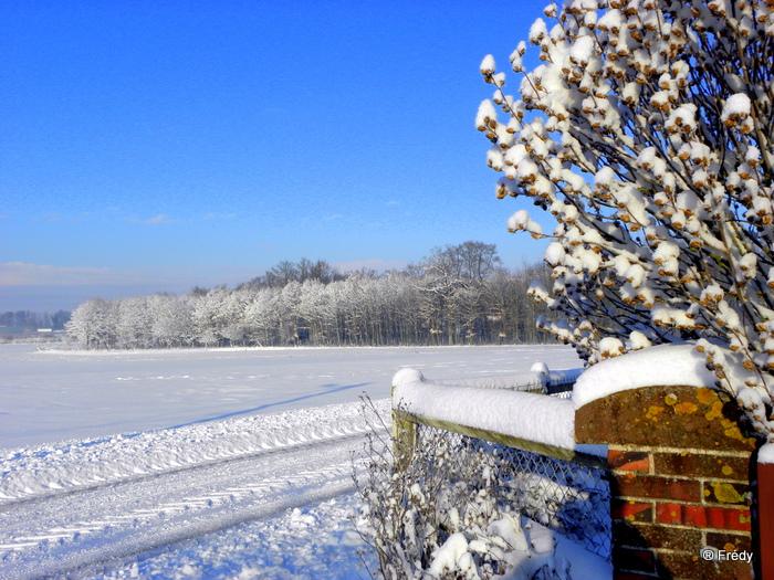 En Normandie aussi, la neige 20100107_008