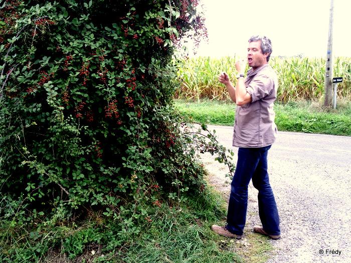 Vallée du Guiel 20100906_001