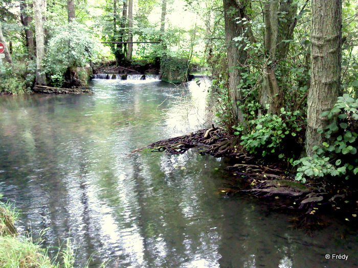 Vallée du Guiel 20100906_004