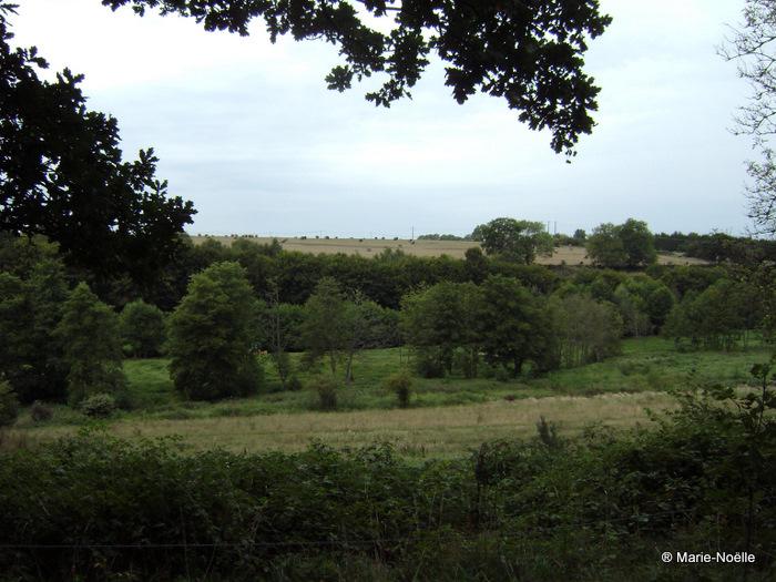 Vallée du Guiel 20100906_007