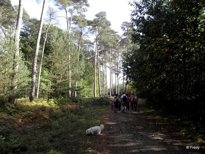 La Vallée Comette 20101008_008